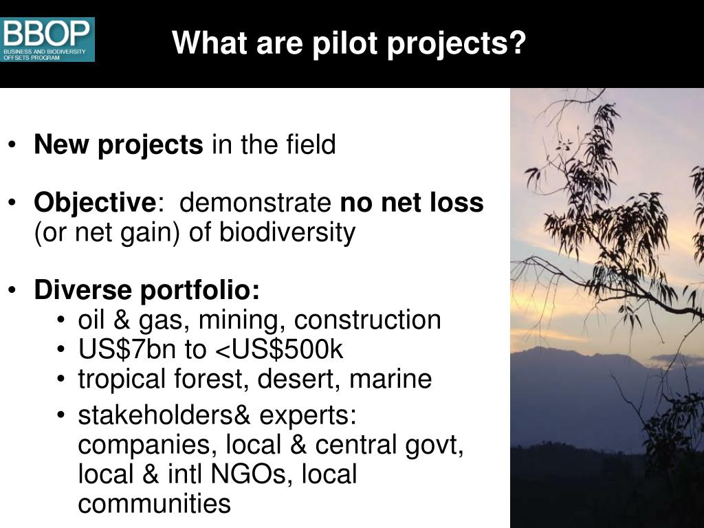 What are pilot projects?