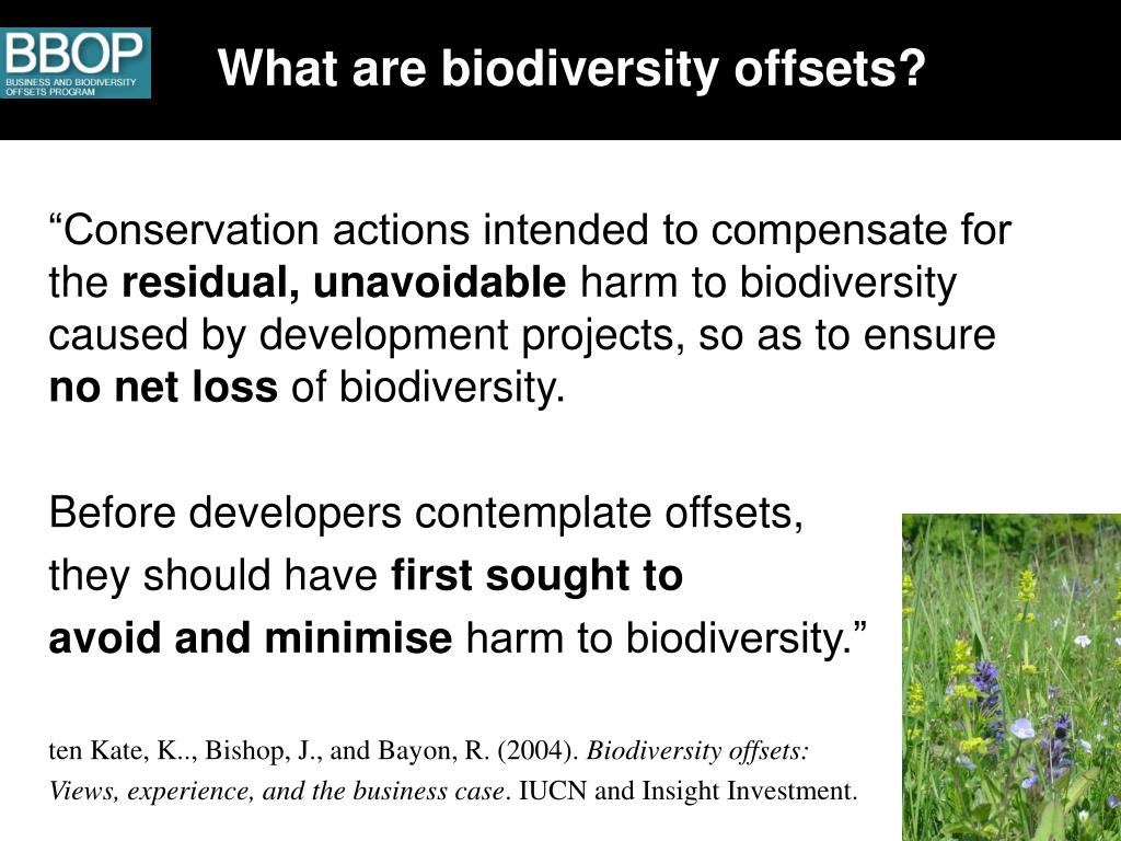 What are biodiversity offsets?