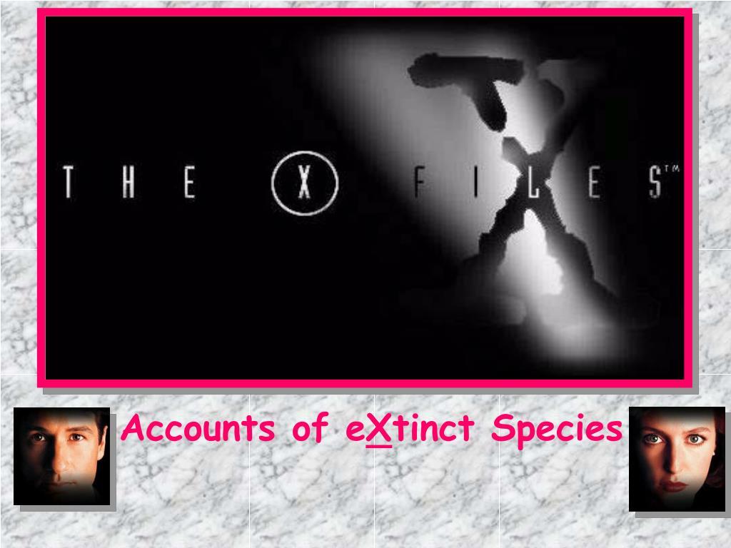 Accounts of e