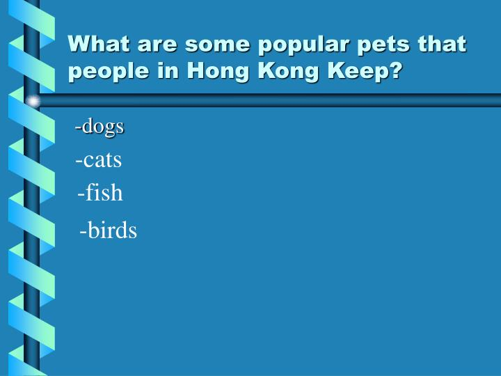 What are some popular pets that people in hong kong keep