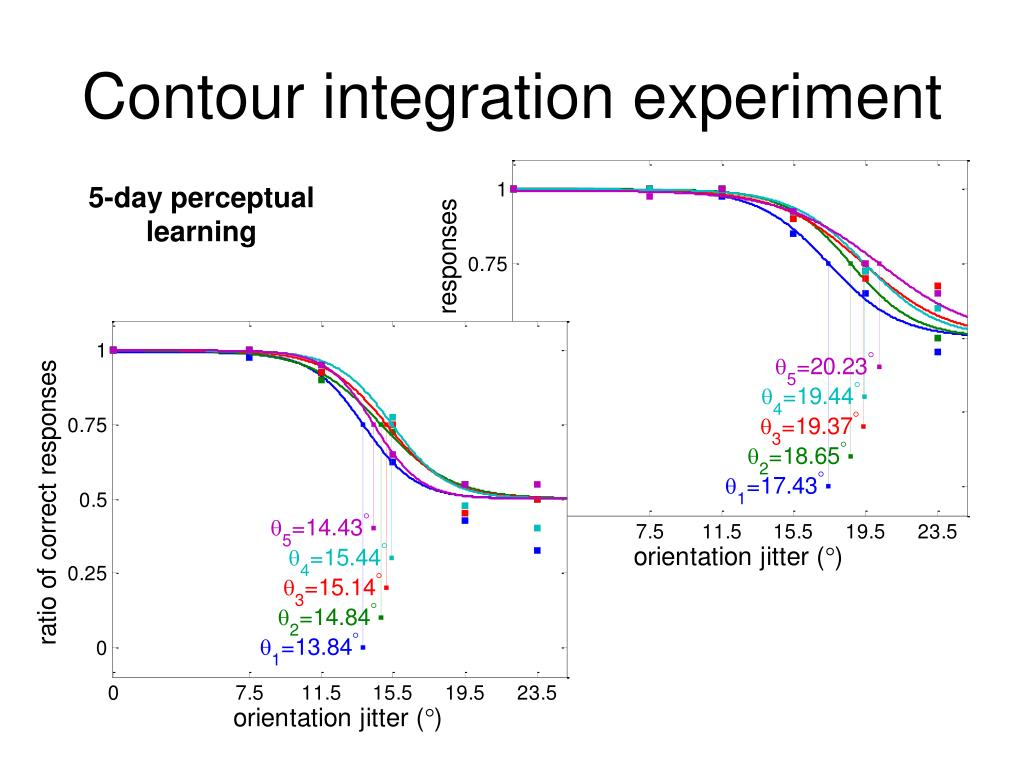Contour integration experiment