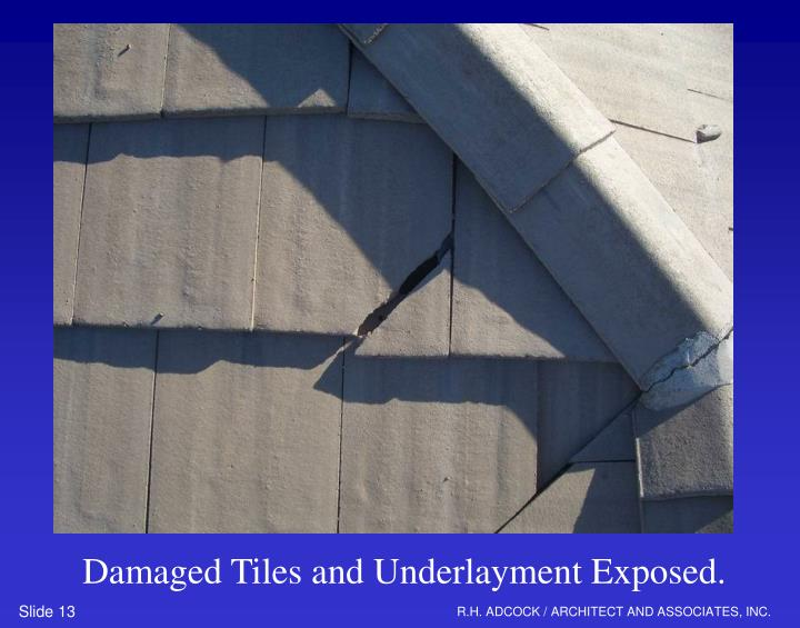 Damaged Tiles and Underlayment Exposed.