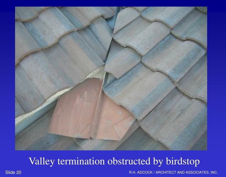 Valley termination obstructed by birdstop