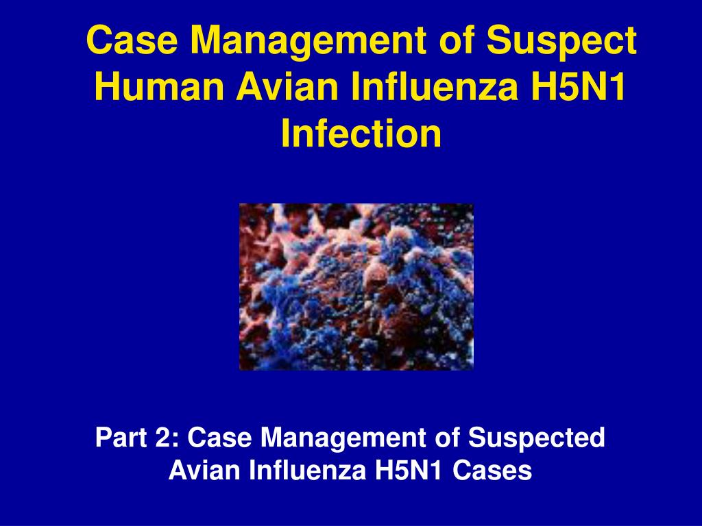 Case Management of Suspect Human Avian Influenza H5N1 Infection