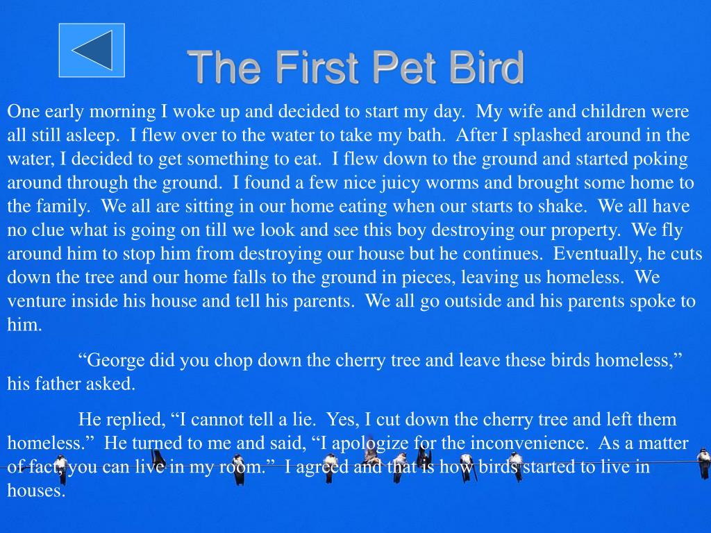 The First Pet Bird
