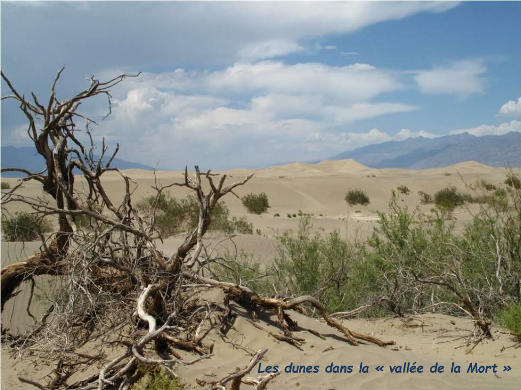 Les dunes dans la «vallée de la Mort»