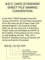 a e c cadd standard sheet file naming convention