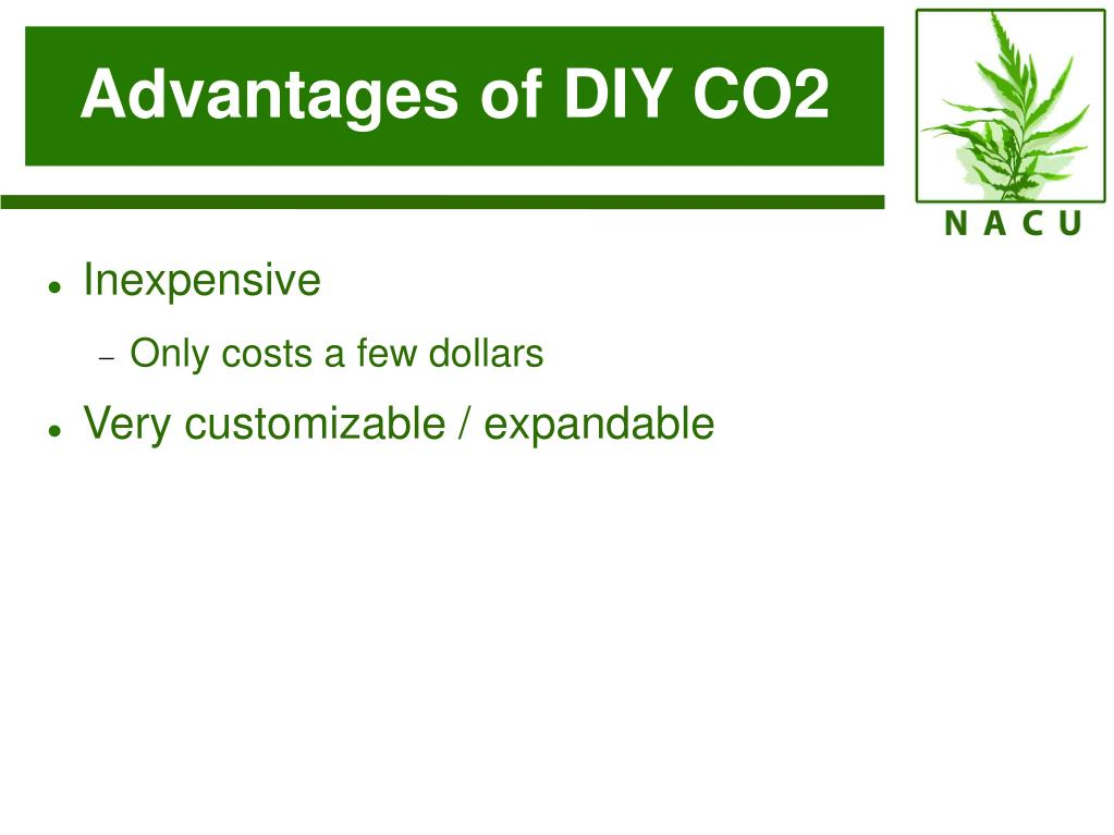 Advantages of DIY CO2