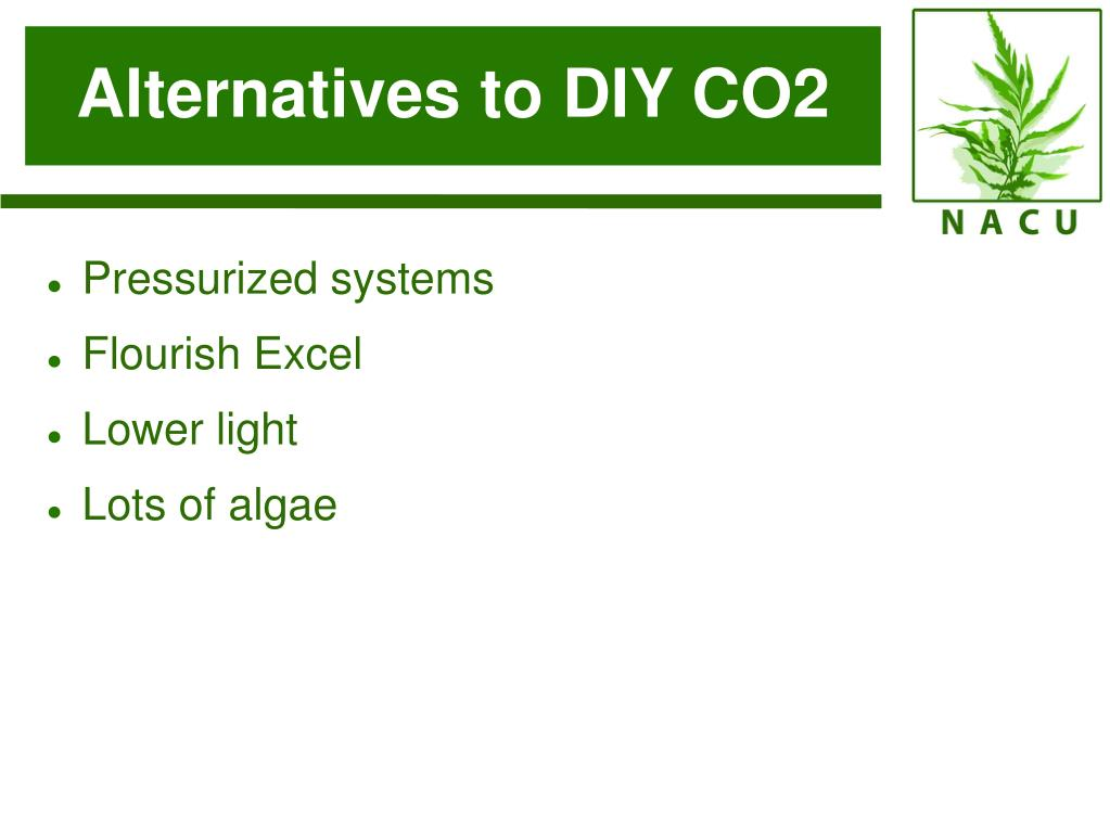 Alternatives to DIY CO2