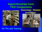 apprenticeships have two components