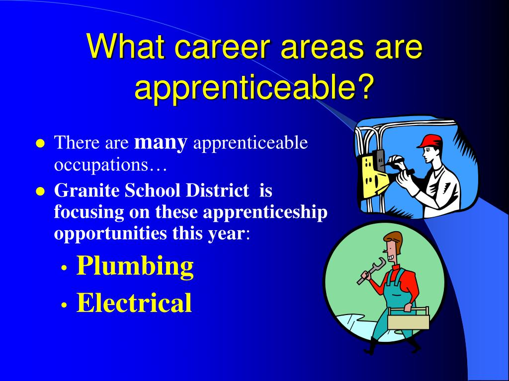 What career areas are apprenticeable?