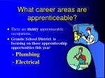 what career areas are apprenticeable