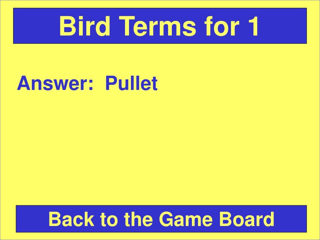 Bird Terms for 1