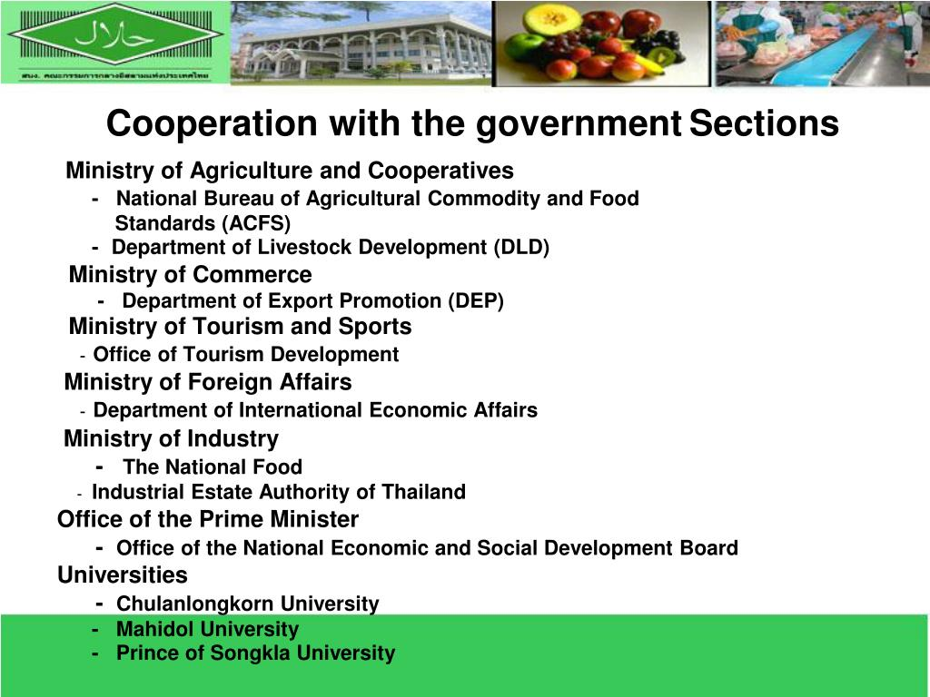 Cooperation with the government
