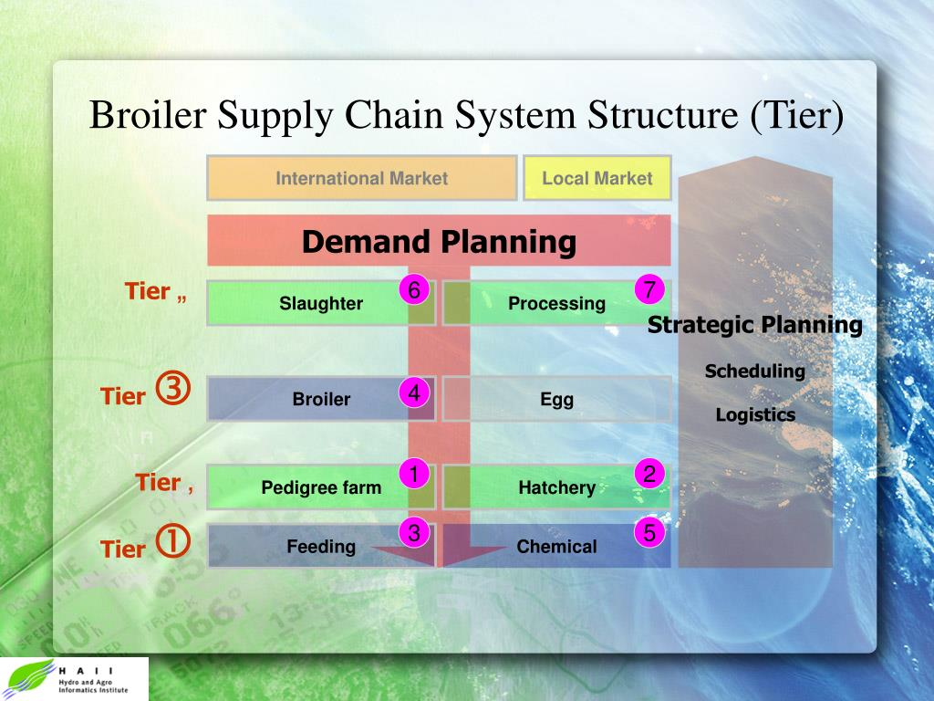 Broiler Supply Chain System Structure (Tier)