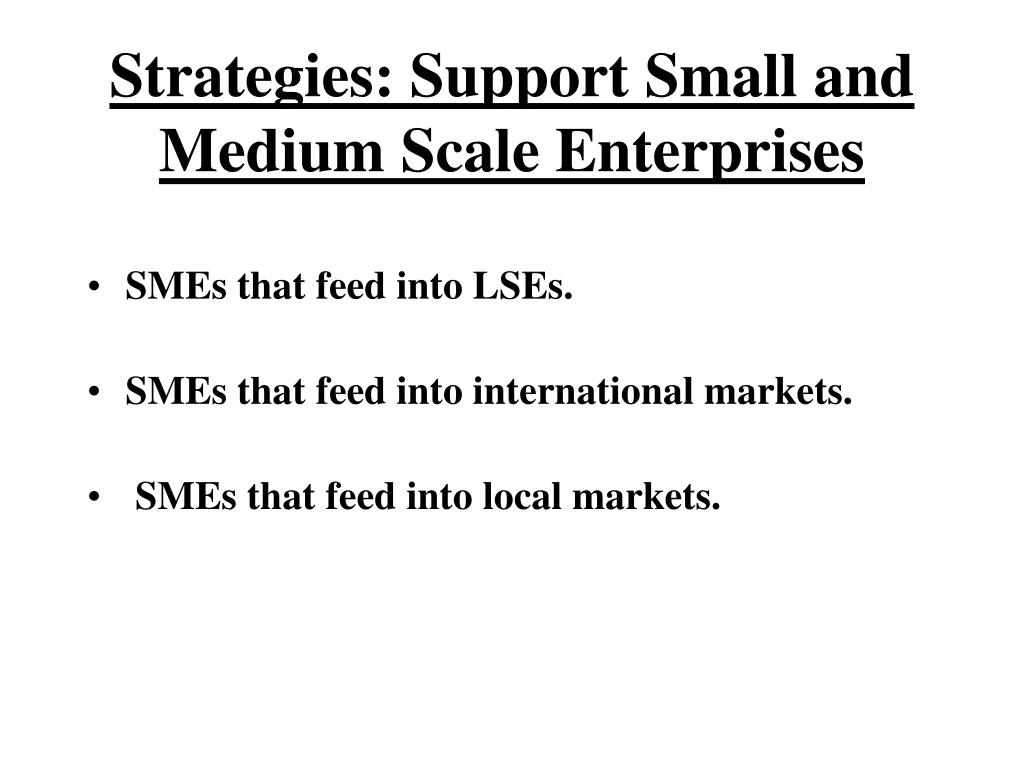 Strategies: Support Small and Medium Scale Enterprises