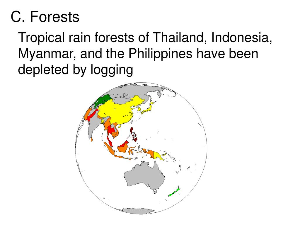 Tropical rain forests of Thailand, Indonesia, Myanmar, and the Philippines have been depleted by logging