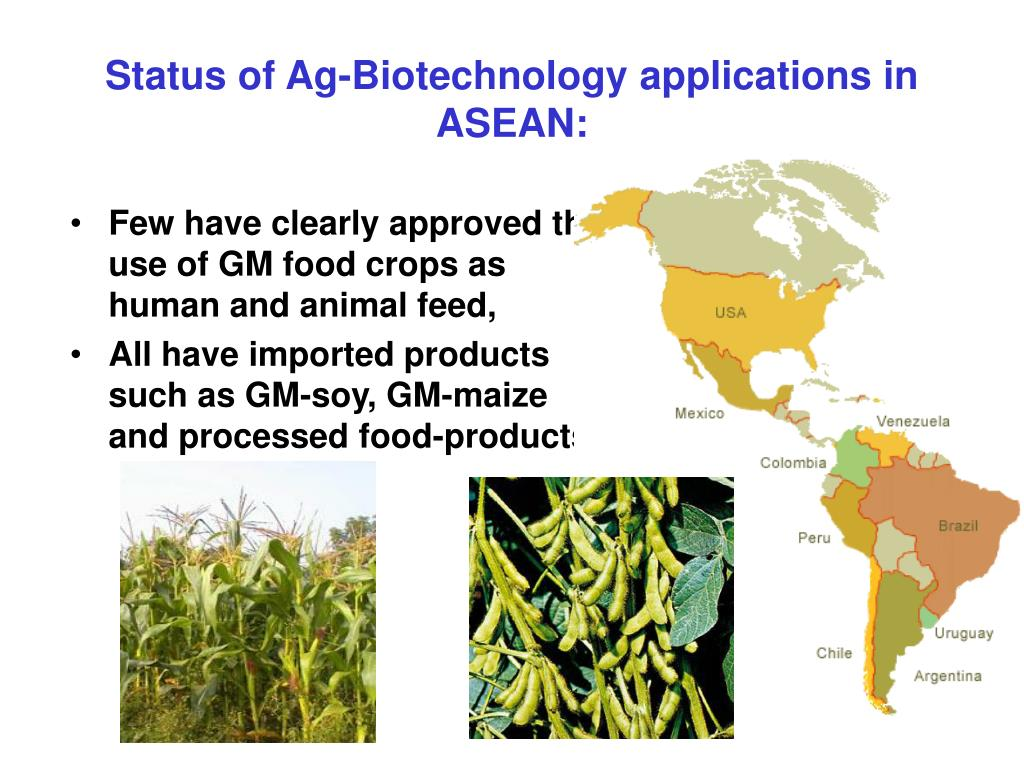 Status of Ag-Biotechnology applications in ASEAN: