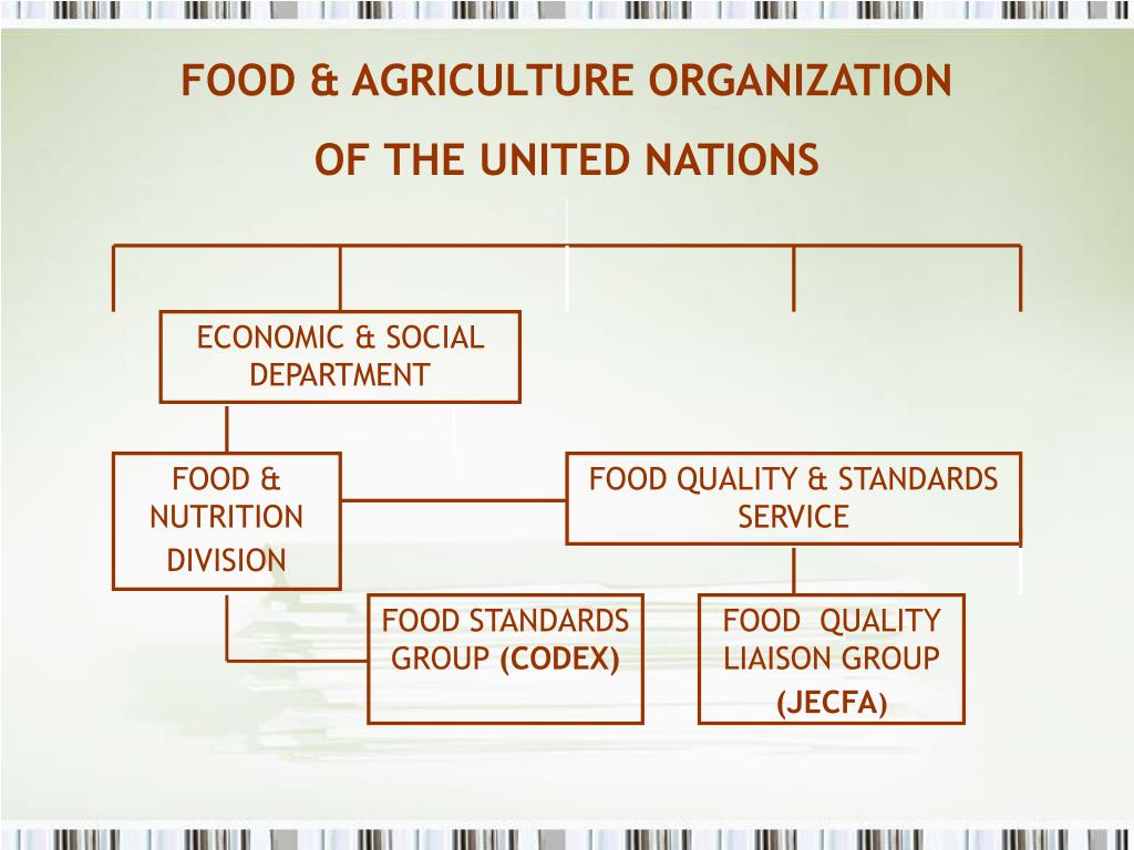 FOOD & AGRICULTURE ORGANIZATION