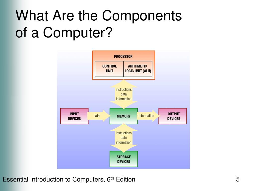 What Are the Components
