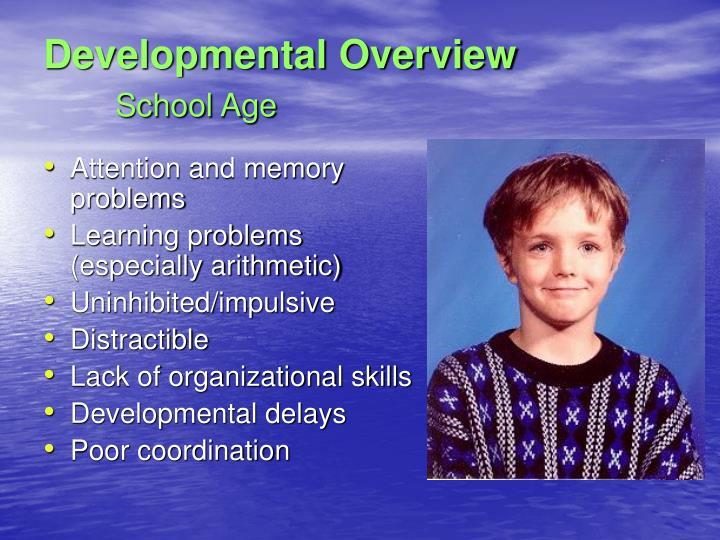 Developmental Overview