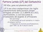 fattore letale lf del carbonchio