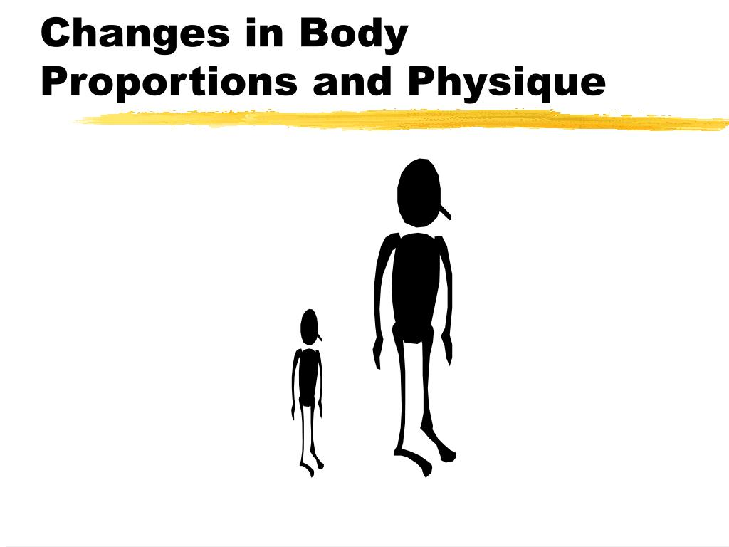 Changes in Body Proportions and Physique