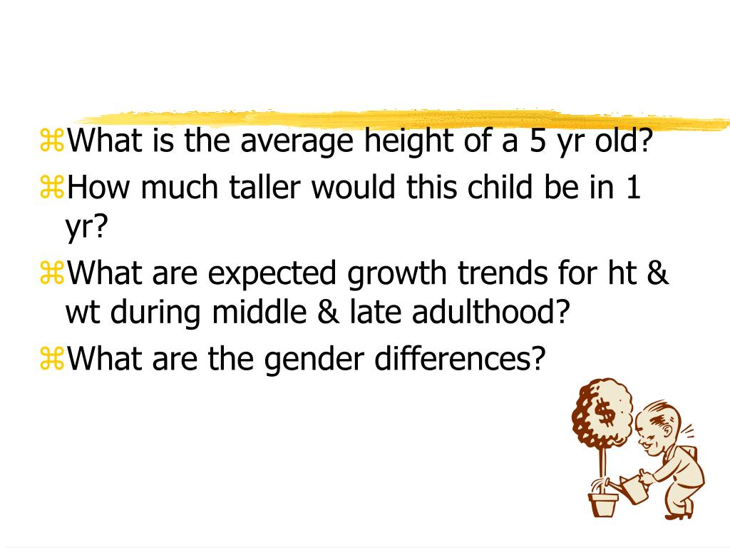 What is the average height of a 5 yr old?