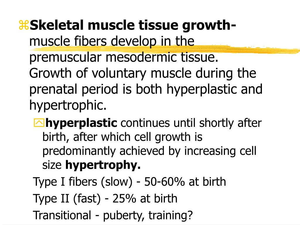 Skeletal muscle tissue growth-