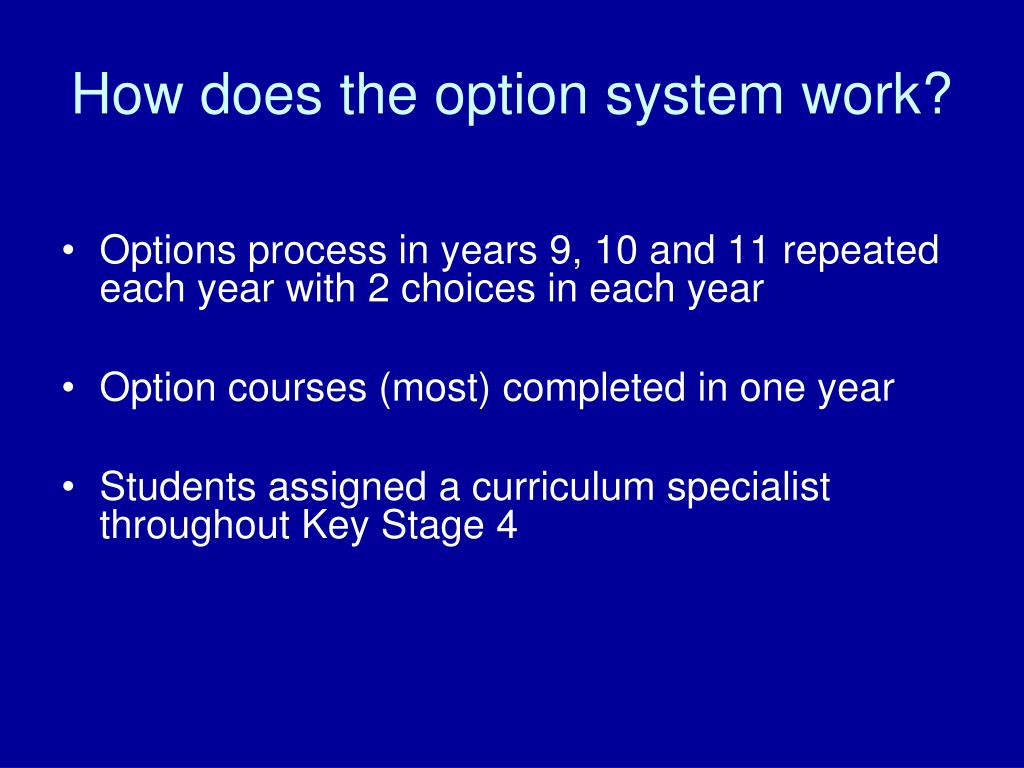How does the option system work?