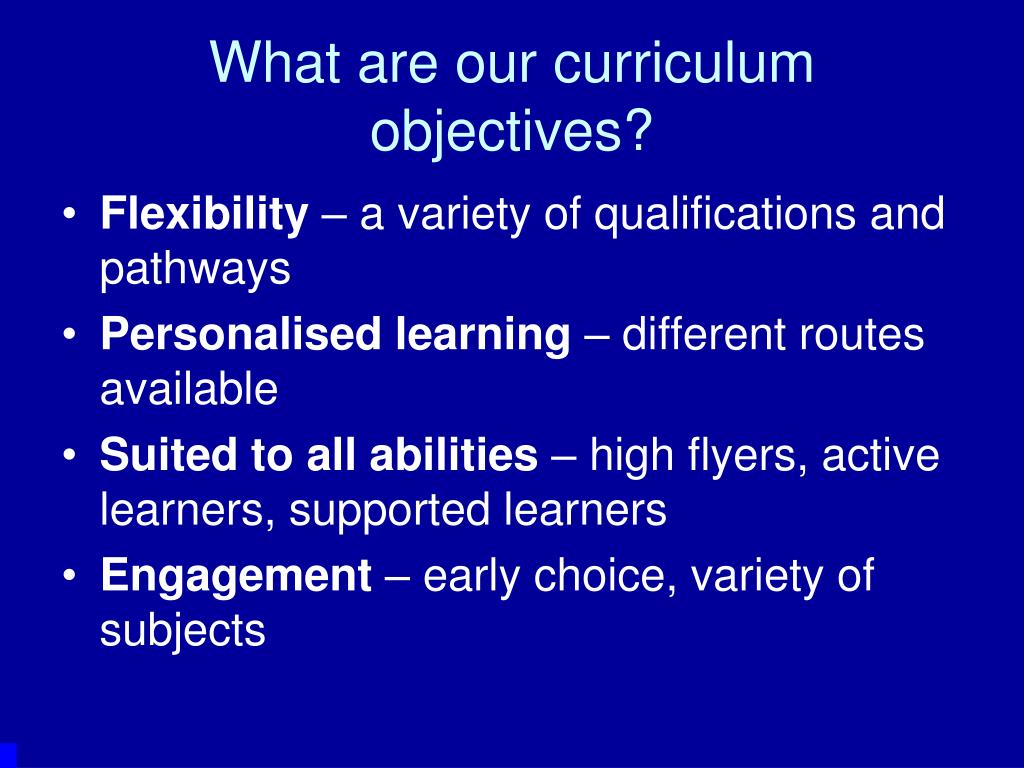 What are our curriculum objectives?