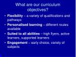 what are our curriculum objectives