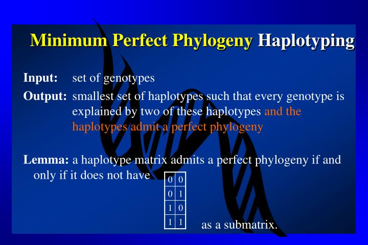 Minimum Perfect Phylogeny