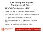 fund raising and program improvement strategies41