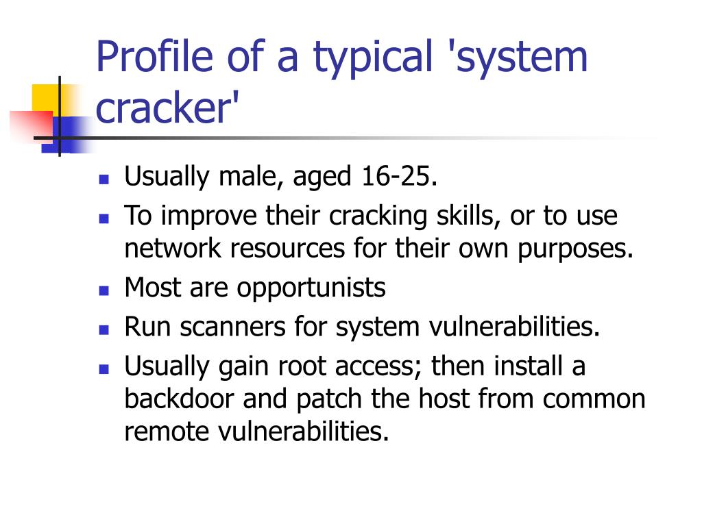 Profile of a typical 'system cracker'