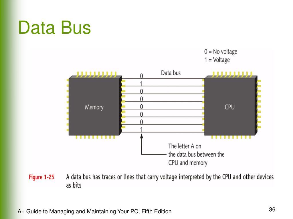 Data Bus