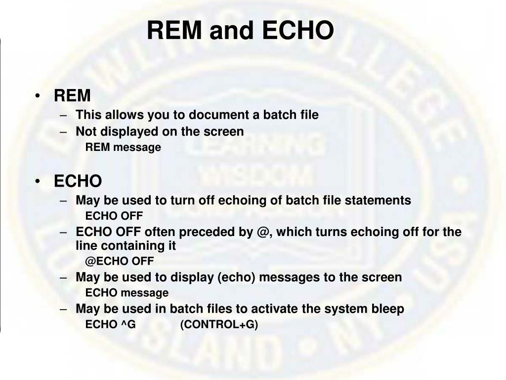 REM and ECHO