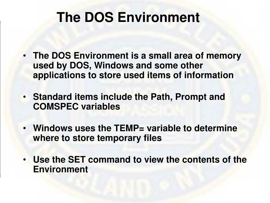 The DOS Environment