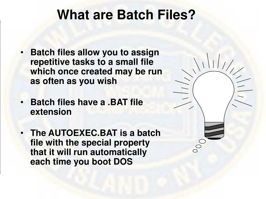 What are Batch Files?