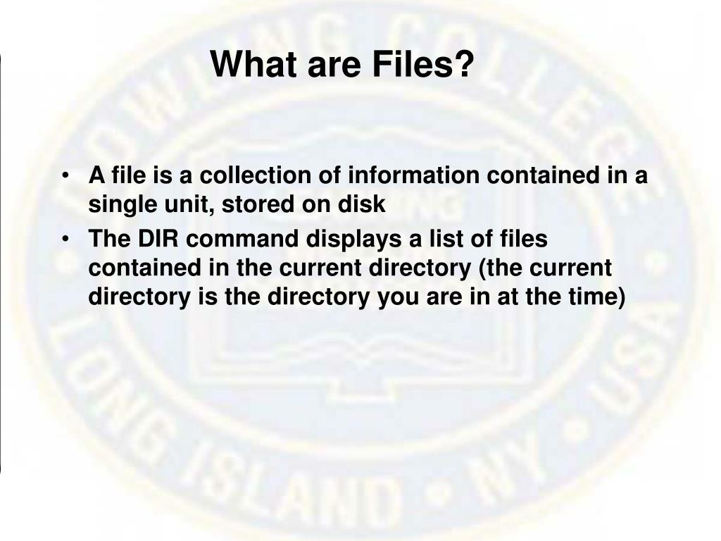 What are Files?