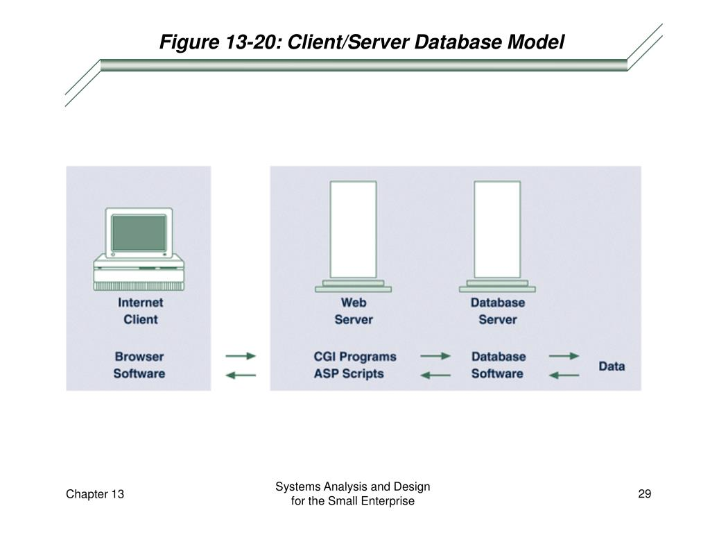 Figure 13-20: Client/Server Database Model