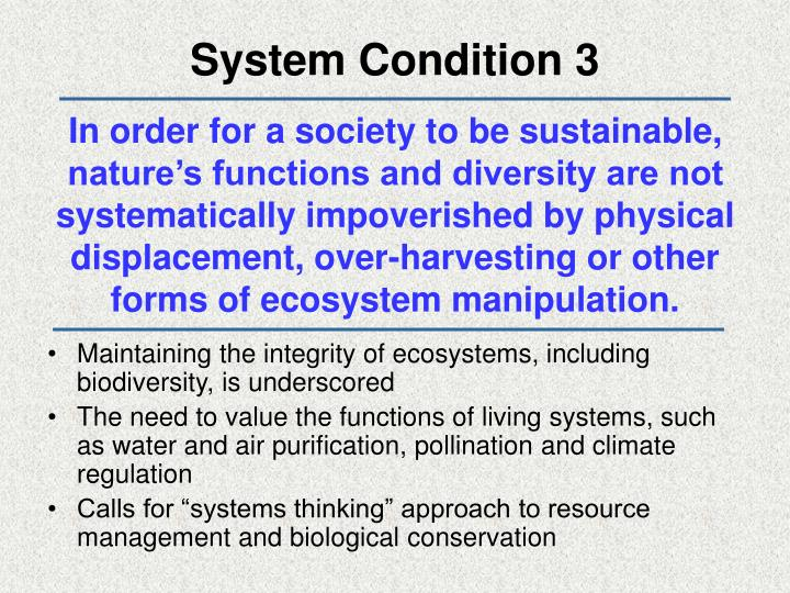 System Condition 3