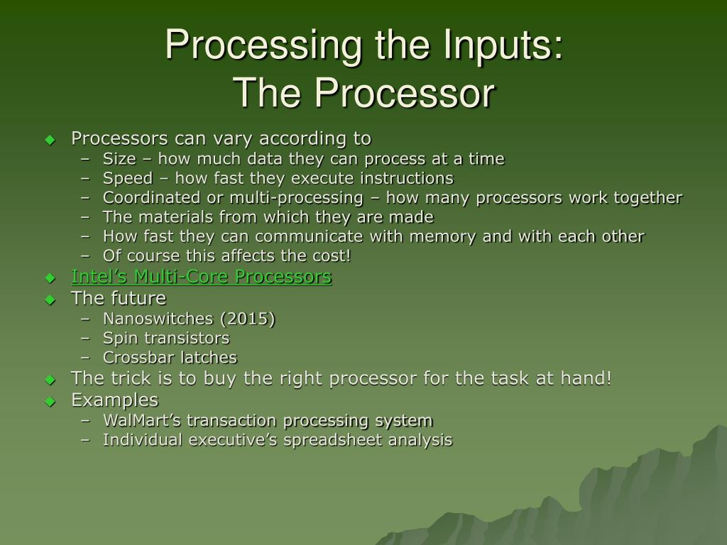 Processing the Inputs: