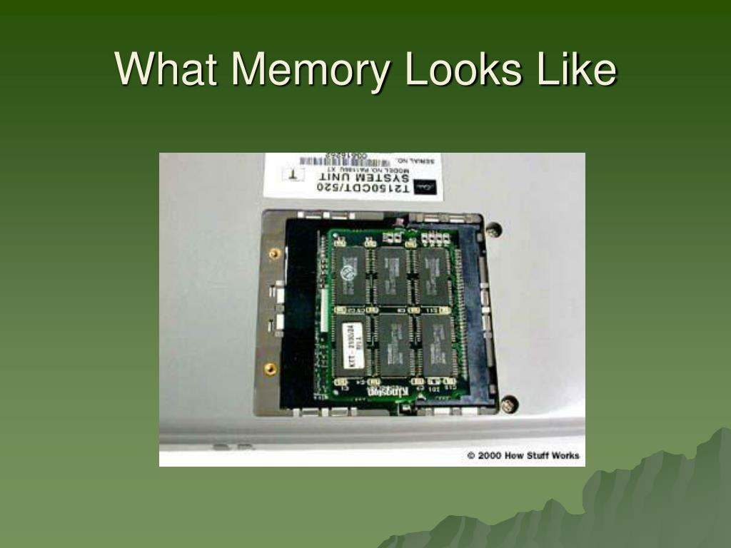 What Memory Looks Like