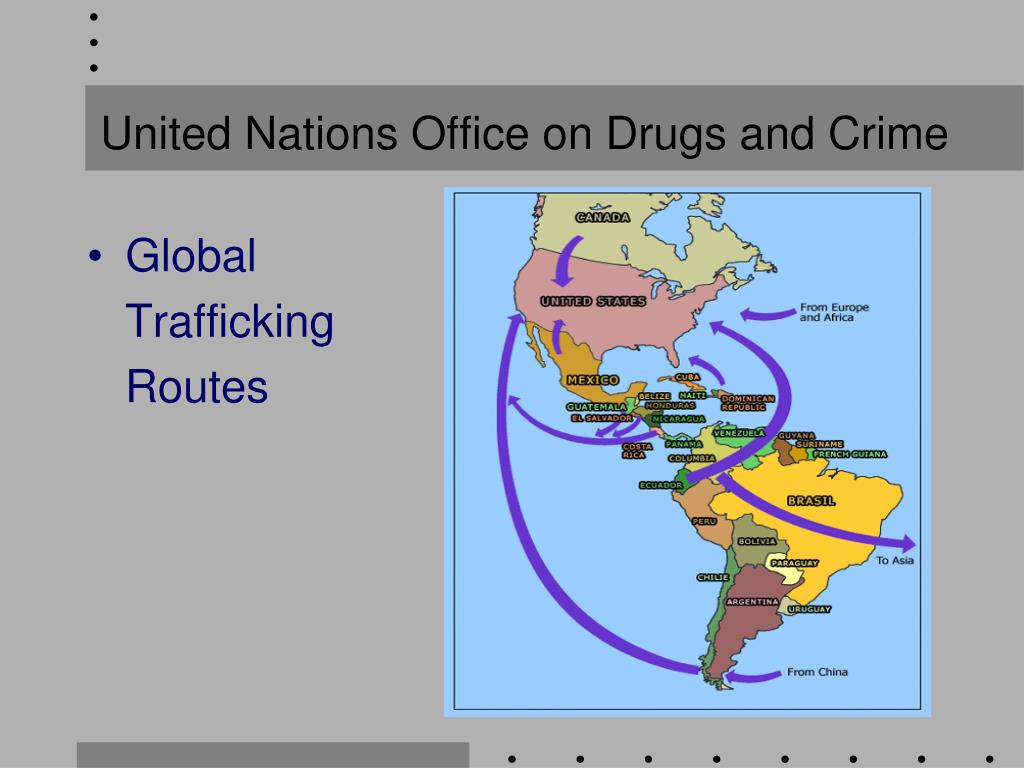 about united nations office on drugs and crime relationship