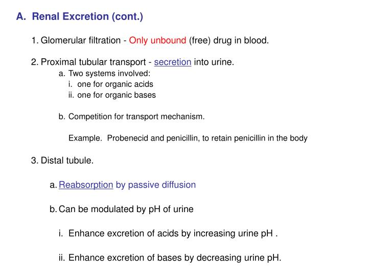A.  Renal Excretion (cont.)