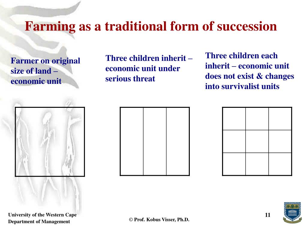 Farming as a traditional form of succession