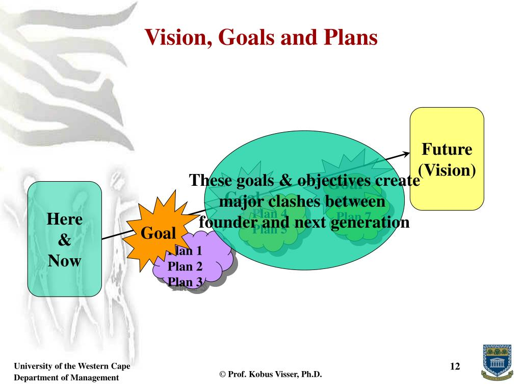 Vision, Goals and Plans
