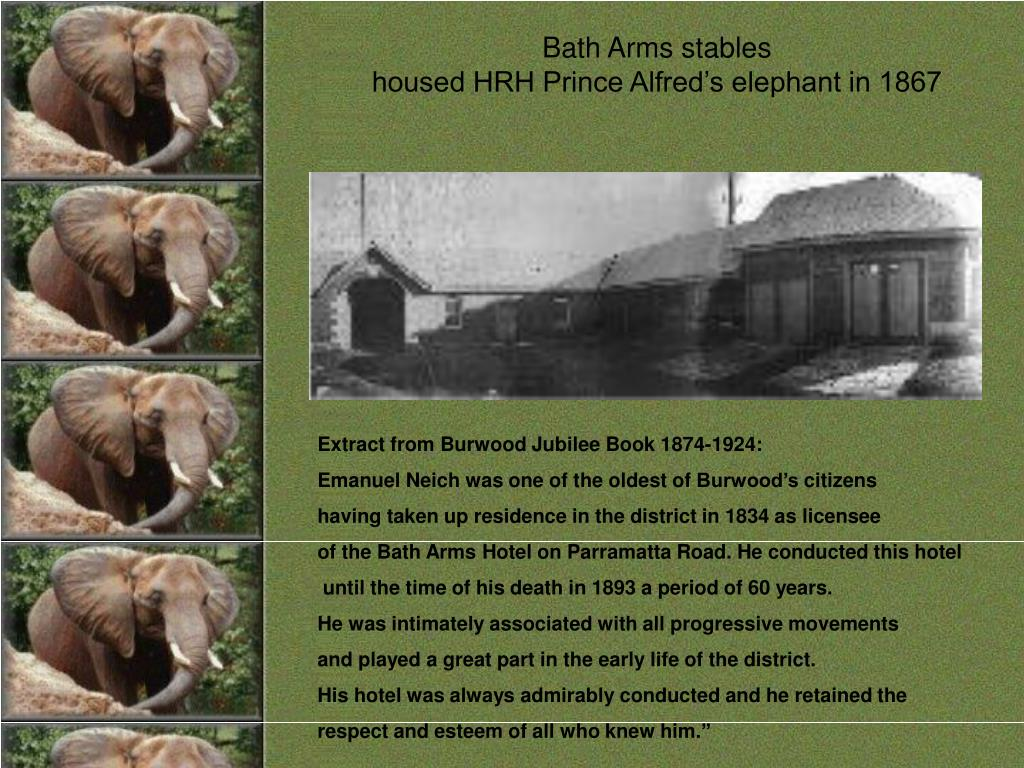 Bath Arms stables