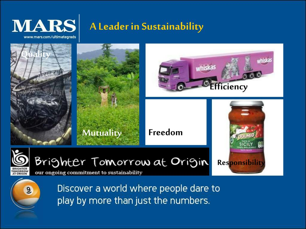 A Leader in Sustainability